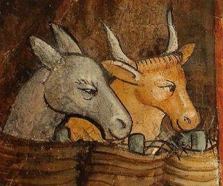 Boeuf-et-âne-gris